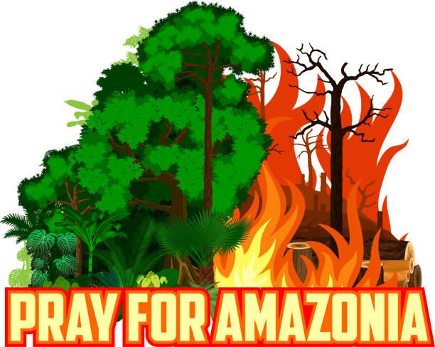 stockillustraties, clipart, cartoons en iconen met bidden voor amazonia opslaan groene jungle rainforest-ontbossing concept landschap vector illustratie - illustraties van bosbrand