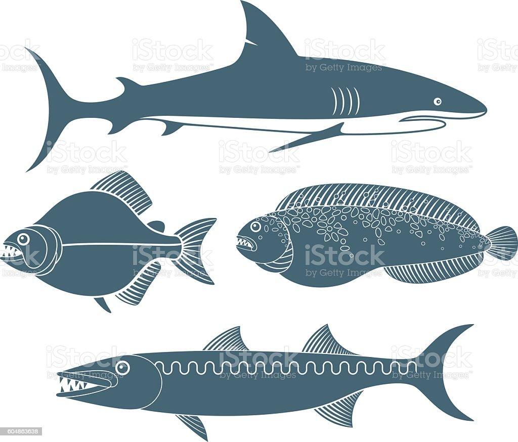 Predator  Fish vector art illustration
