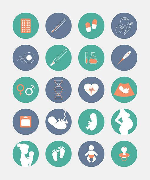 ilustraciones, imágenes clip art, dibujos animados e iconos de stock de el embarazo y nacimiento conjunto de iconos - planificación familiar