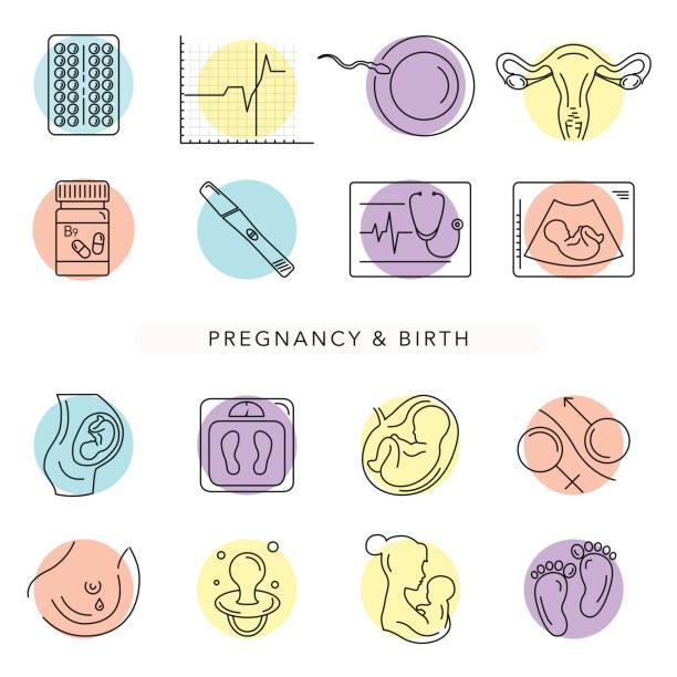 illustrations, cliparts, dessins animés et icônes de grossesse et l'accouchement. icônes de vecteur de ligne. - naissance