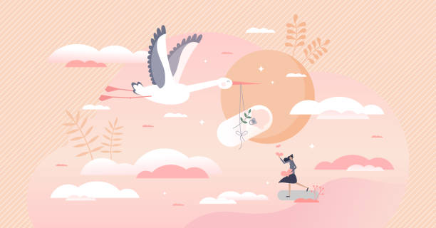 Pregnancy as newborn baby expectation and stork delivery tiny person concept vector art illustration