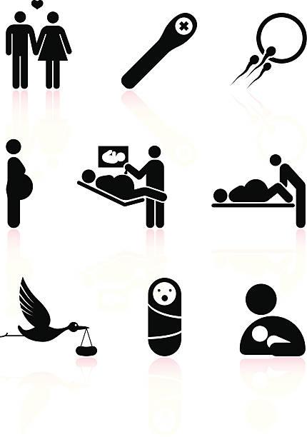 ilustraciones, imágenes clip art, dibujos animados e iconos de stock de embarazo blanco y negro sin royalties de conjunto de iconos vectoriales - planificación familiar