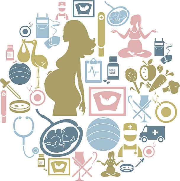 Pregnancy Icon Set vector art illustration