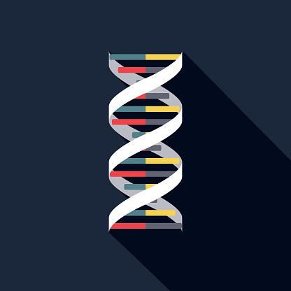 DNA Pregnancy Icon