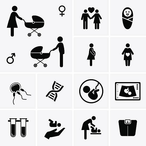 pregnancy icons. obstetrics, gynecology, birth, medicine symbol. - pregnancy stock illustrations, clip art, cartoons, & icons