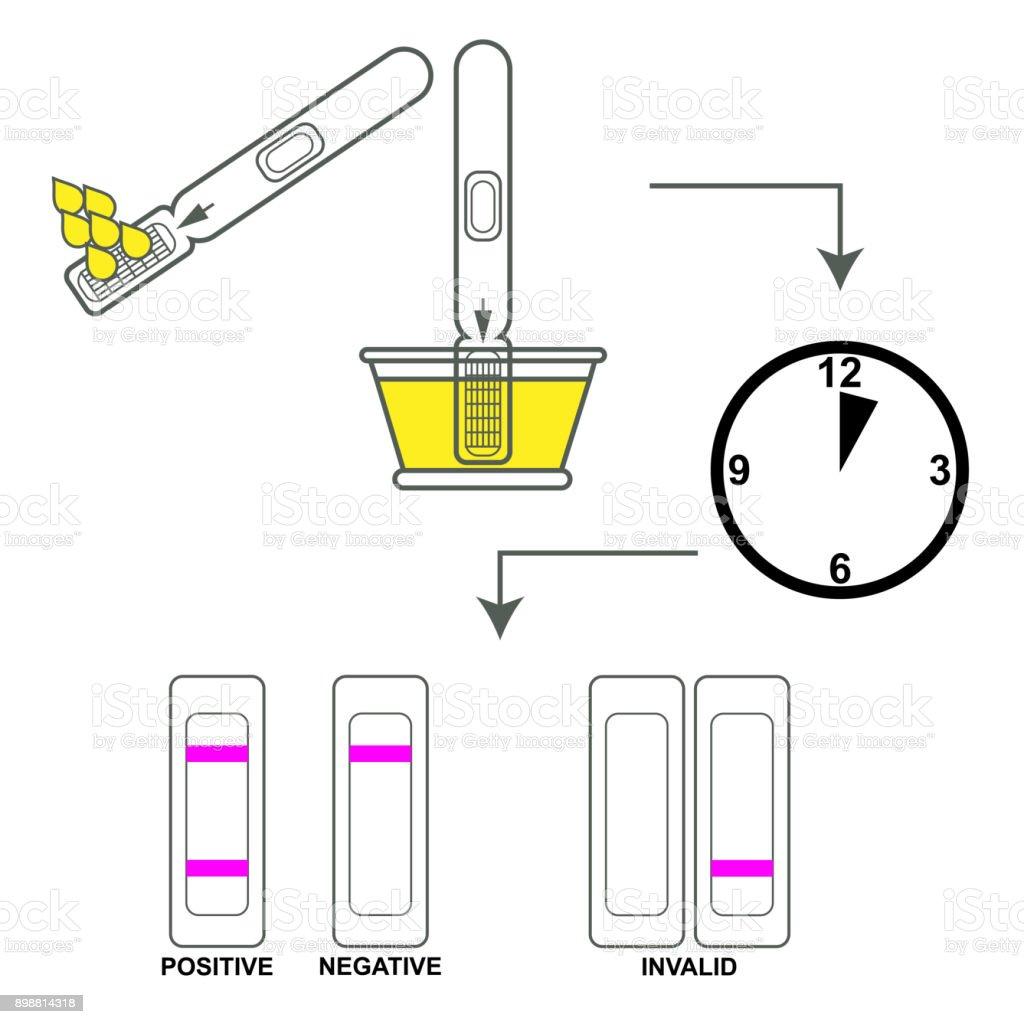 Instrucciones test de embarazo - ilustración de arte vectorial
