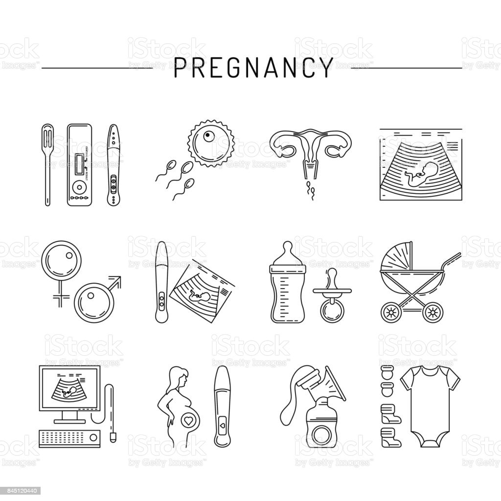 pregnancy vector icon vector art illustration