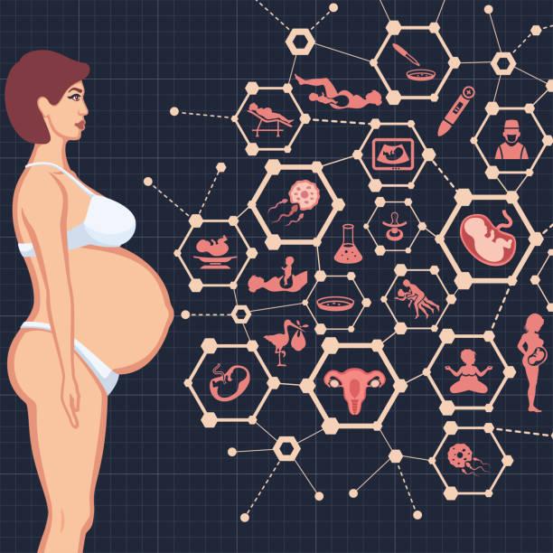 ilustraciones, imágenes clip art, dibujos animados e iconos de stock de el embarazo - planificación familiar