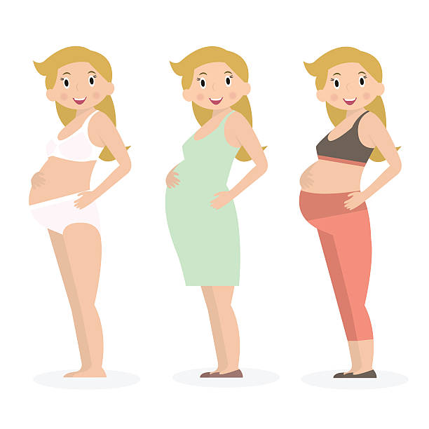 Pregnant woman in different clothes and underwear. Flat style. Pregnant woman in different clothes and underwear. Flat style. Vector Illustration little girls in panties stock illustrations