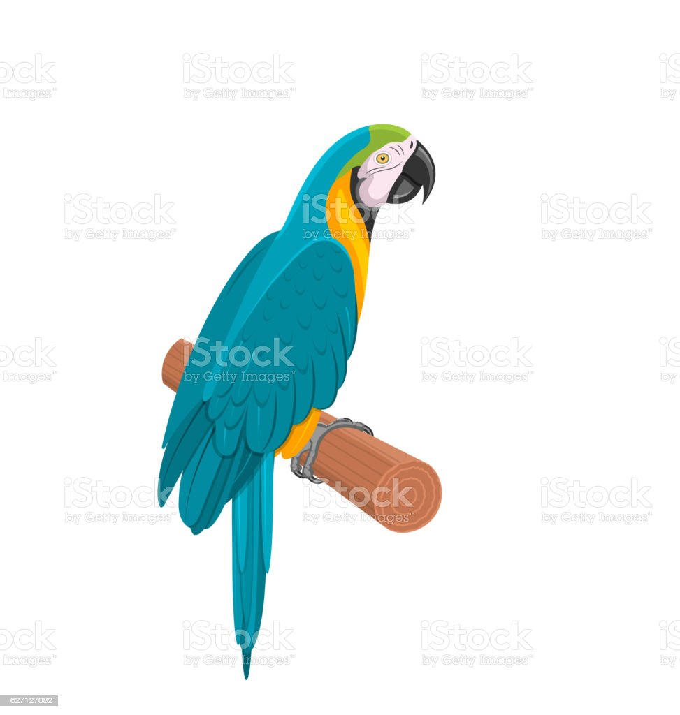 Pretty Blue Parrot Ara on Branch. Bird Isolated  White Background vector art illustration