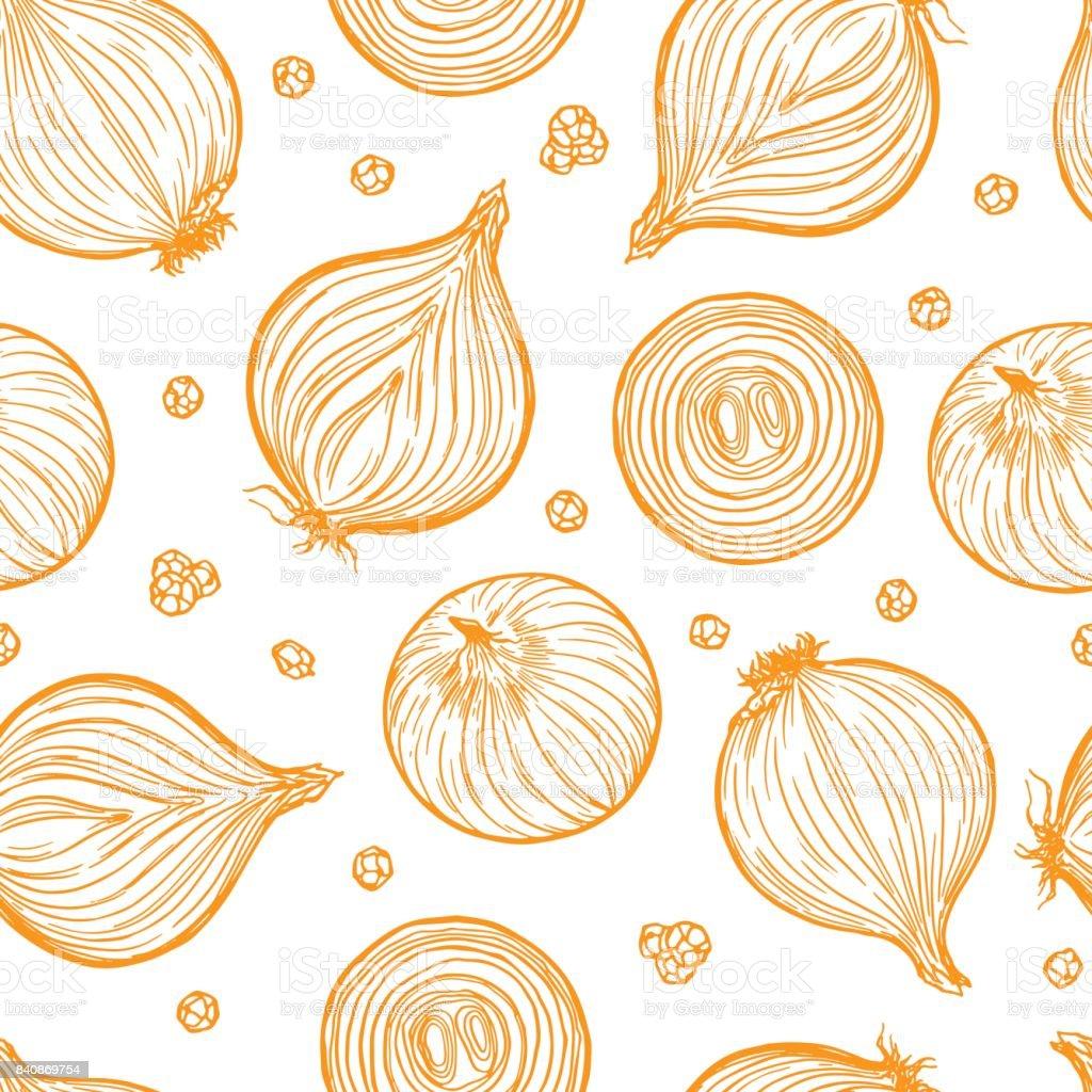 Yellow onion clip art