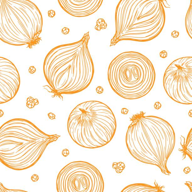 Pretty sketched seamless pattern made of hand drawn onion. Pretty sketched seamless pattern made of hand drawn onion. onion stock illustrations
