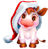 Pretty white cow calf symbol of 2021 new year. Nice baby bull in santa claus hat. Isolated on white vector cartoon illustration