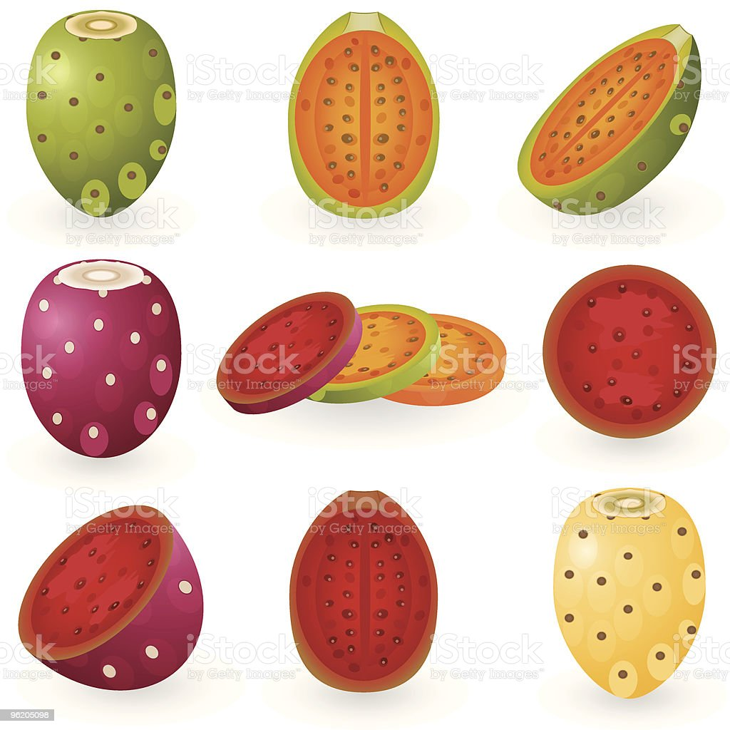 Prickly pear royalty-free stock vector art