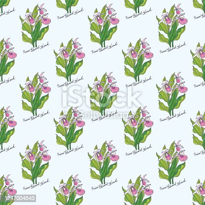 Prince Edward Island. Flowers of the Canadian Provinces and Territories. Vector illustration.