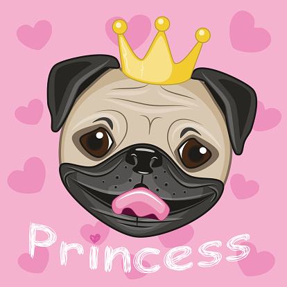Princess Pug Dog