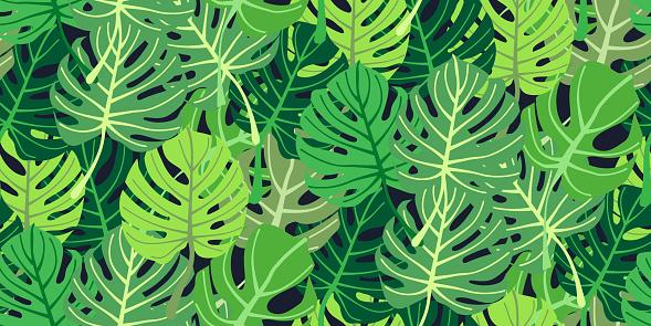 Print summer jungle plant tropical palm leaves