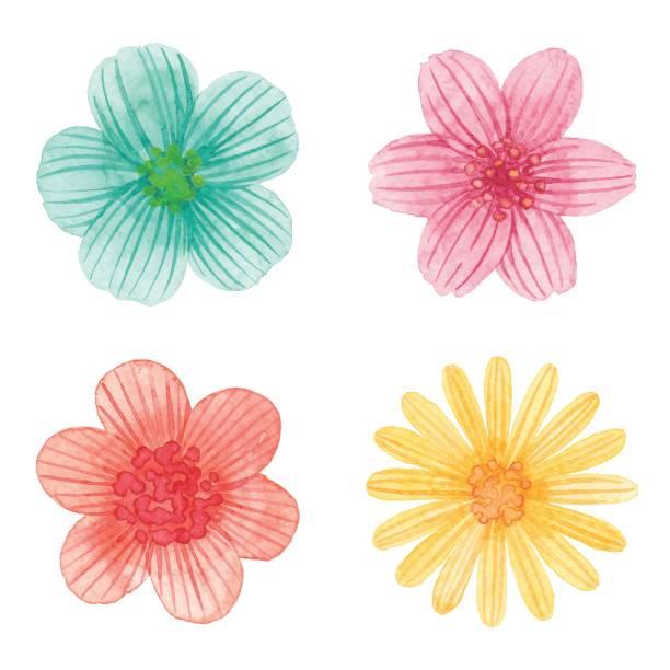 Print Watercolor illustration. flower head stock illustrations