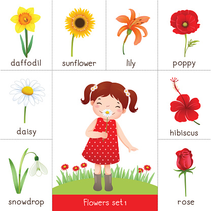 Printable flash card for flowers and little girl smelling flower