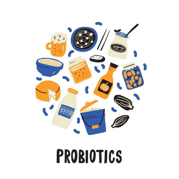 probiotische. handgezogener kreis illlustration im doodle-stil. vektor - sauerkraut stock-grafiken, -clipart, -cartoons und -symbole