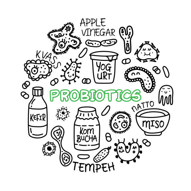 Royalty Free Anaerobic Bacteria Clip Art, Vector Images