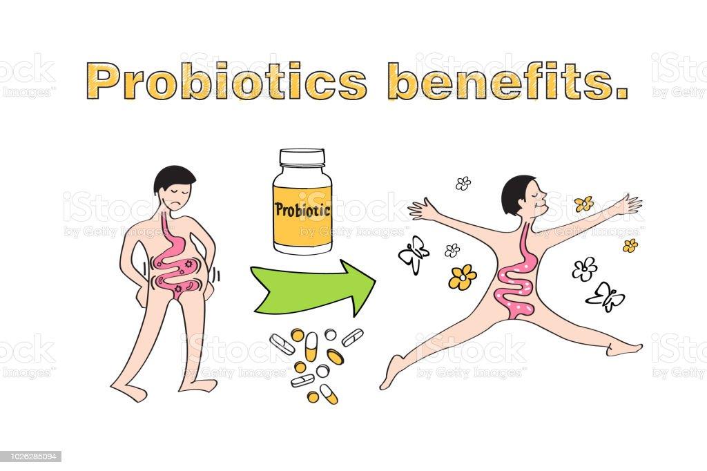Ilustración de Beneficios De Los Probióticos Esquema De La ...