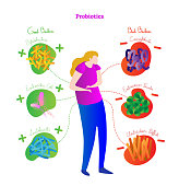 Probiotics conceptual vector illustration poster. Medical labeled diagram with female, stylized good and bad bacteria. Health care related information scheme.