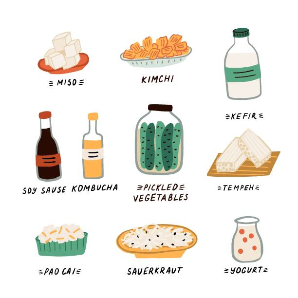 Probiotics Set of different food and drinks containing probiotics. Fermented foods and milk daires. Concept of healthy food for strong immune system and weight loss temps stock illustrations