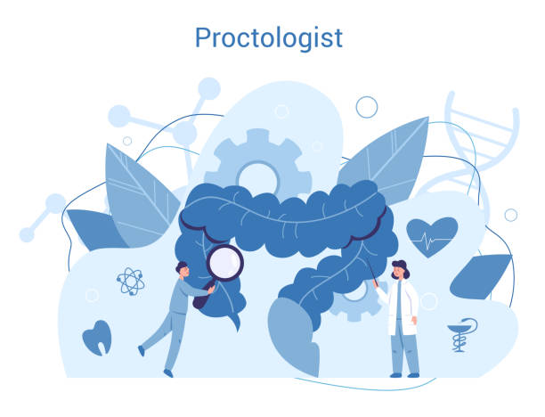 Proctologist concept. Doctor examine intestine. Idea of health and vector art illustration