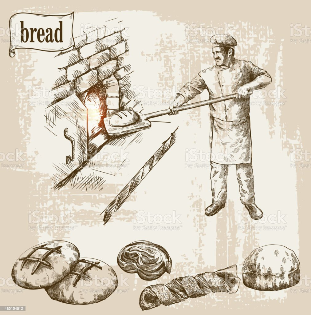 profession of chef vector art illustration
