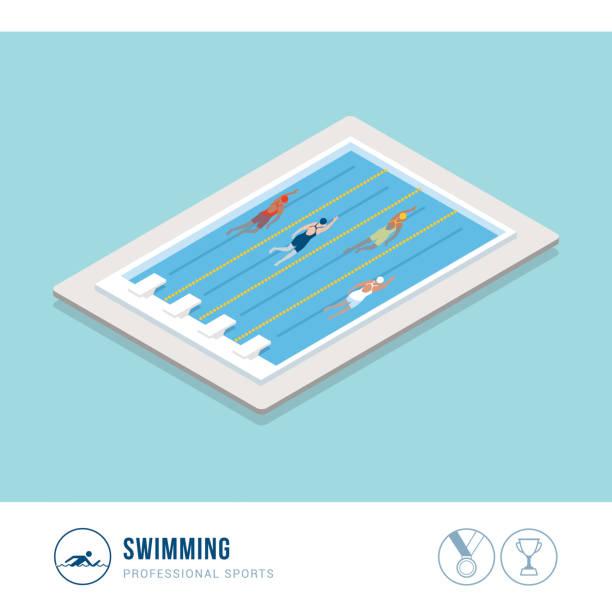 illustrations, cliparts, dessins animés et icônes de compétition sportive professionnelle : natation - piscine