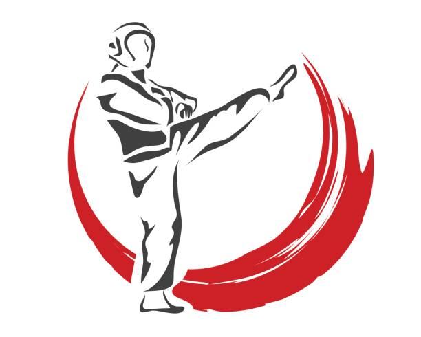 professional taekwondo athlete in action - taekwondo stock illustrations, clip art, cartoons, & icons