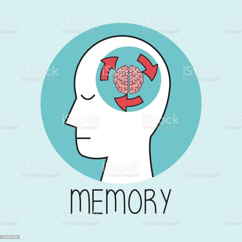 profile human head brain memory vector art illustration