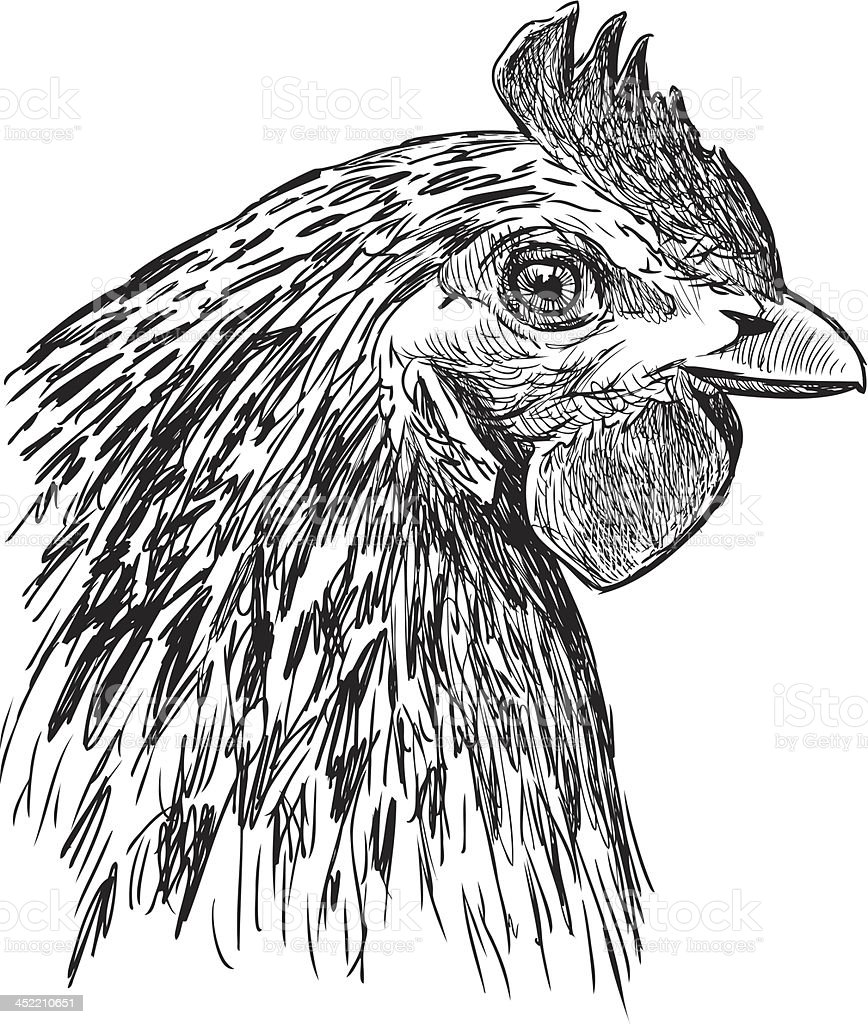 profile of a hen royalty-free stock vector art