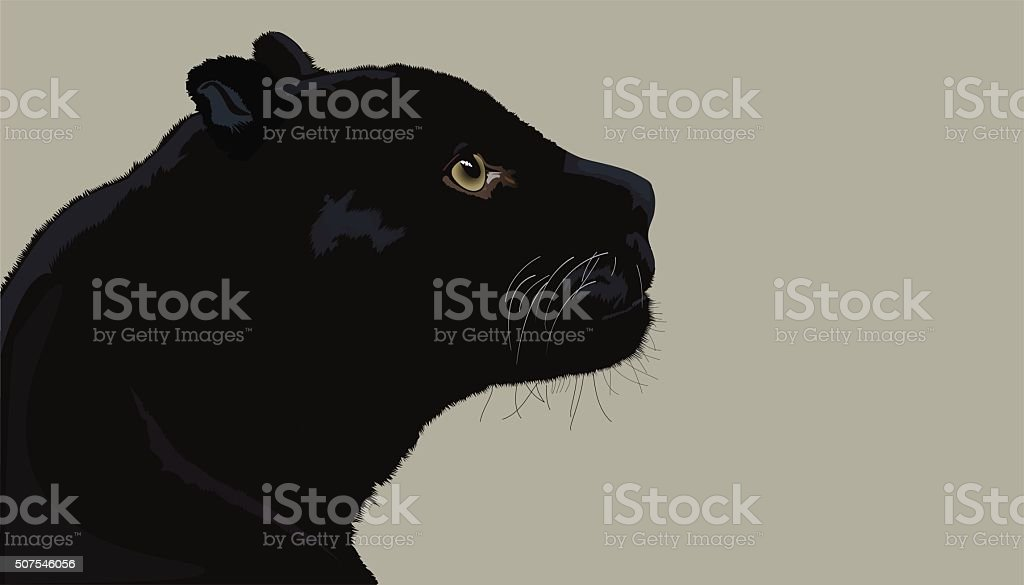 Profile Panthers vector art illustration
