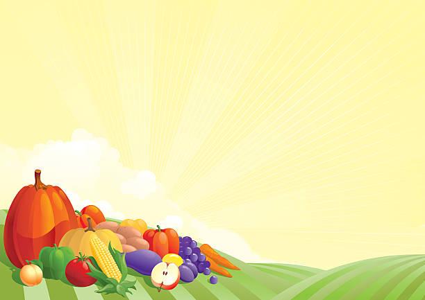 vielzahl von obst und gemüse - karotte peace stock-grafiken, -clipart, -cartoons und -symbole