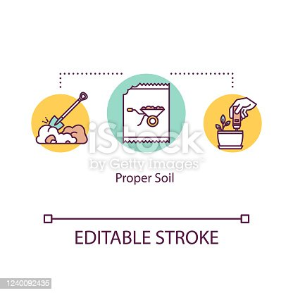 Proper soil concept icon. Soil pH levels, acidity test. Choosing earth. Gardening. Ground ploughing. Planting idea thin line illustration. Vector isolated outline RGB color drawing. Editable stroke
