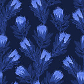 Protea flower vector illustration in tonal blues. Seamless pattern background.