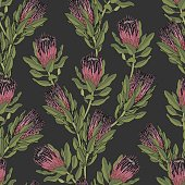 Protea Vector Pattern - Dark