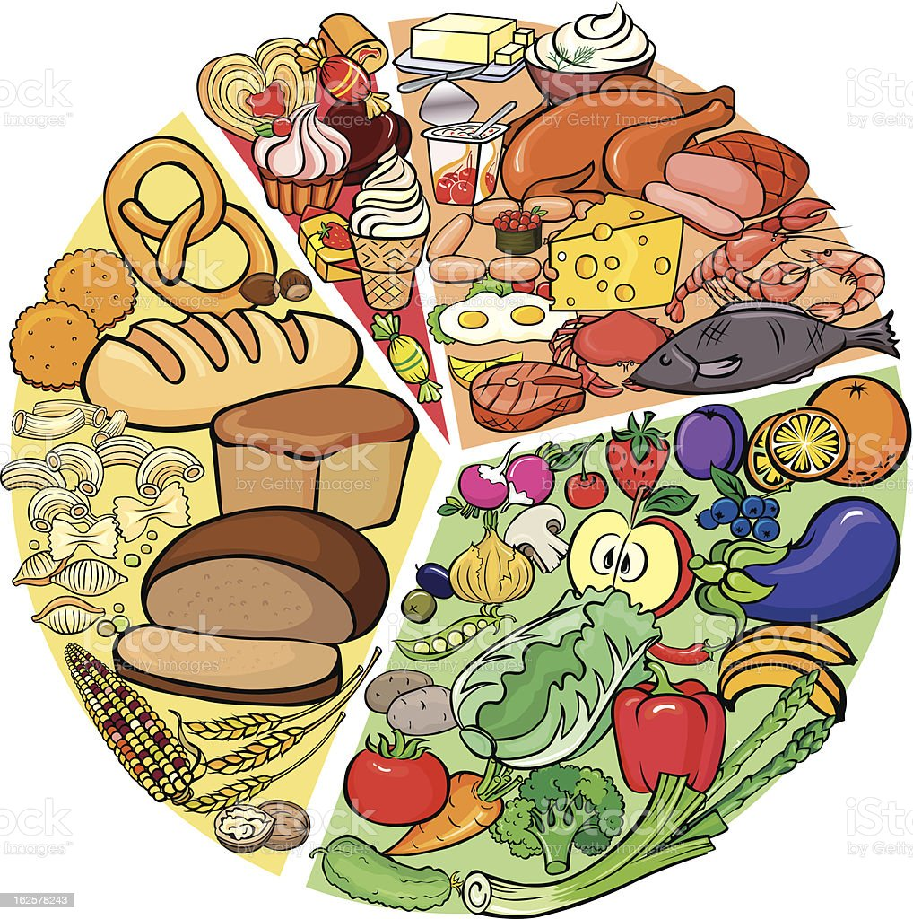 Protein Carbohydrate Diet royalty-free stock vector art