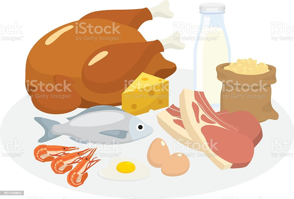 protein diet vector art illustration