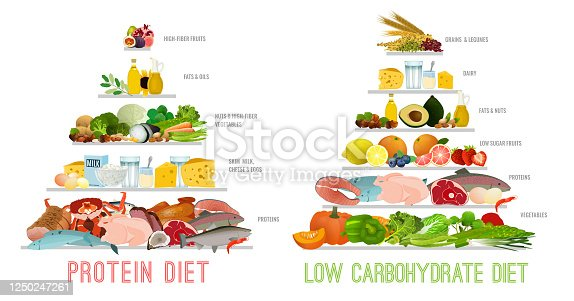 Protein Low Carb Diet