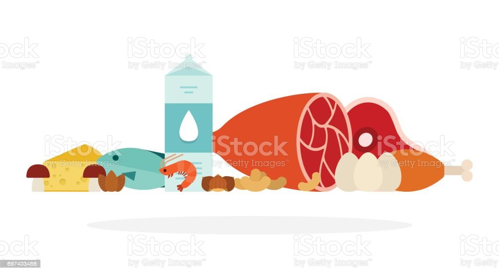 Protein products vector flat isolated vector art illustration
