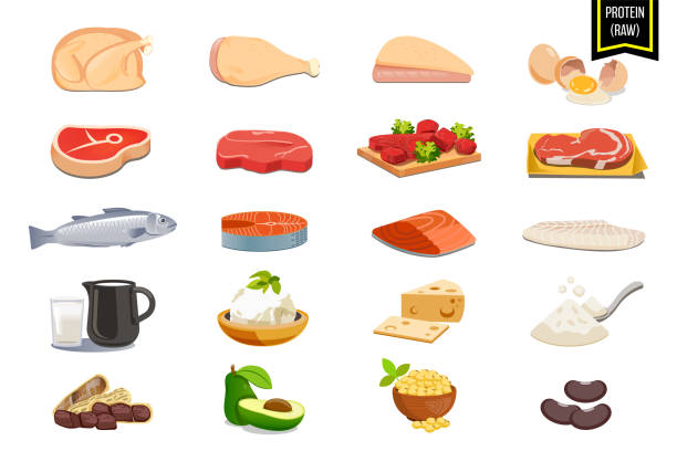 ilustrações de stock, clip art, desenhos animados e ícones de protein raw from animal and vegetable. nutrients food that help the body to repair the wear and tear. - cod