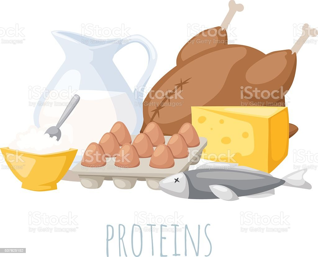 Proteins food vector illustration. vector art illustration