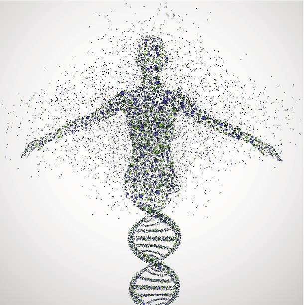 prototyp von frauen - genforschung stock-grafiken, -clipart, -cartoons und -symbole