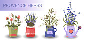 Provence floral vector set. Big flat natural flower plant bouquet collection with lavender, rose and cotton in a pot.