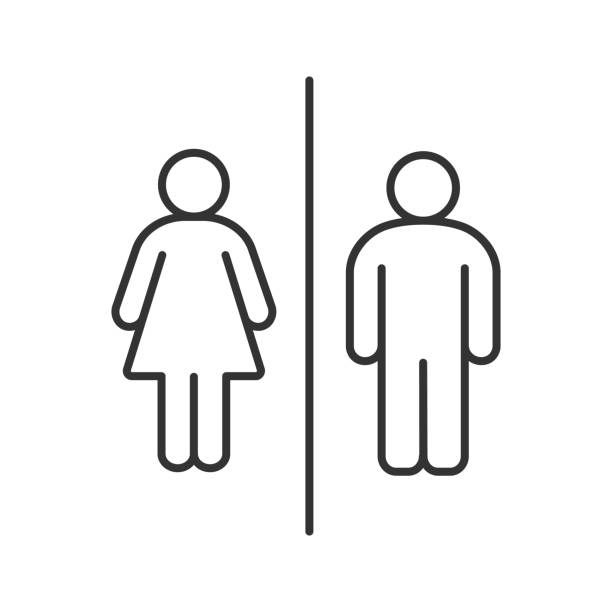 Public toilet information sign icon Public toilet sign linear vector icon. Thin line. Restroom. Male and female WC bathroom icons stock illustrations
