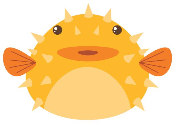 Best Puffer Fish Illustrations, Royalty-Free Vector ...