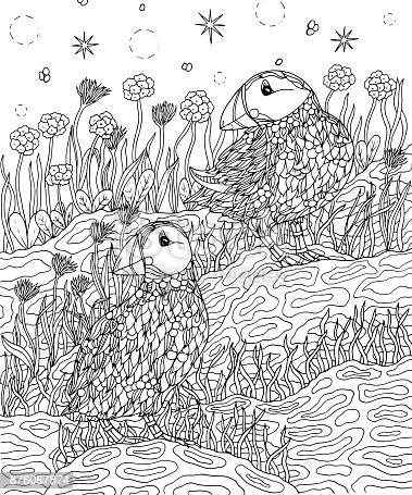 istock cartoon birds for coloring 578561328 istock libro de colorear de ...